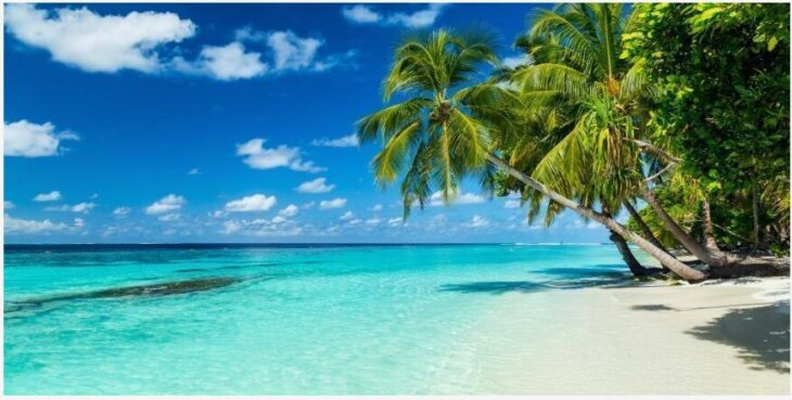 When is the best time to travel to Maldives